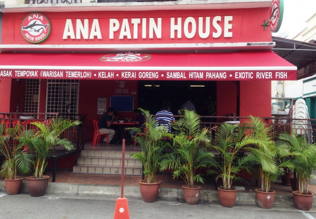 The front of Ana Patin House